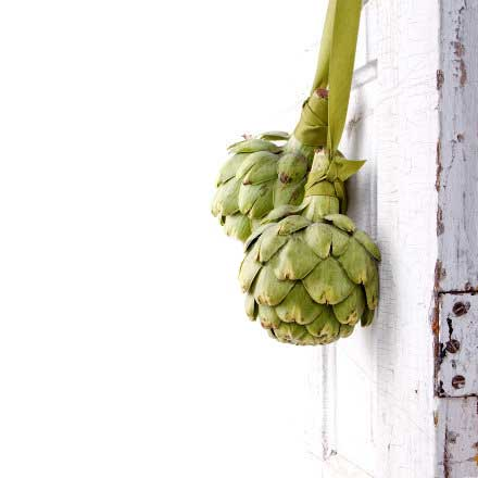 stock-photo-two-artichokes-hanging-from-a-vintage-door-area-for-copy-space-103230086[1]
